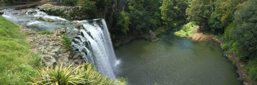 Whangarei Scenic Reserve